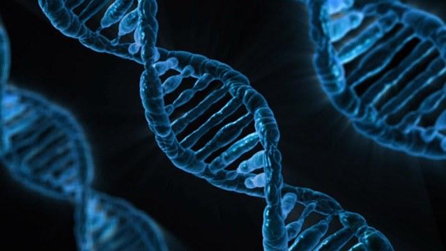 Fachtagung zur erweiterten DNA-Analyse